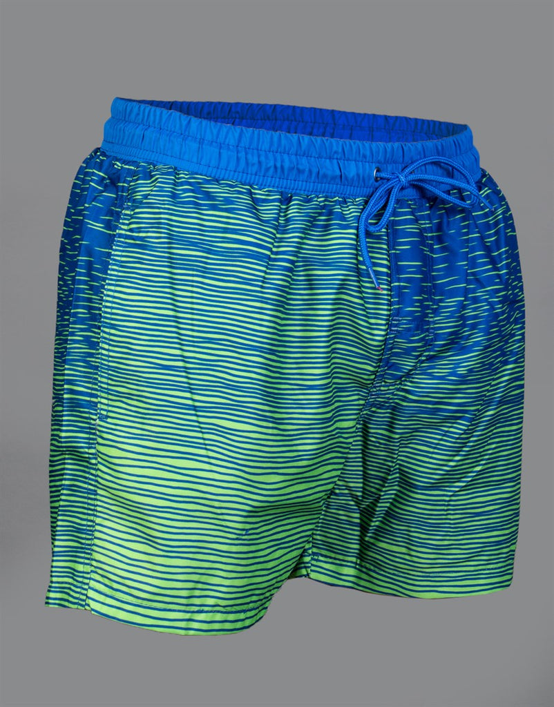 Blue & Green Swim Shorts
