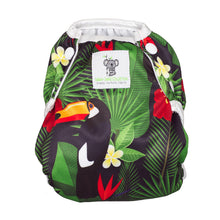 Load image into Gallery viewer, Reusable Swim Nappy- Toucan Jungle