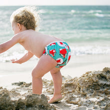 Load image into Gallery viewer, Reusable Swim Nappy & Waterproof Wet Bag - Fox
