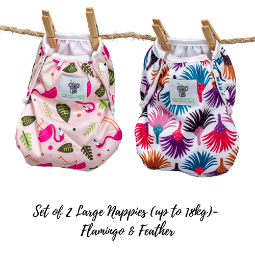 Set of 2 LARGE Reusable Swim Nappies (up to 18kg)- Flamingo & Feather
