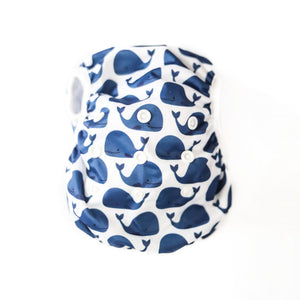 Reusable Swim Nappy Bundle- Set of 2 - Shark & Blue Whale