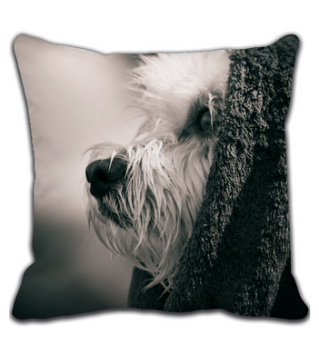 Throw Pillow Thoughtful dog