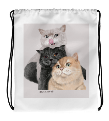 Drawstring Gym Bag 3 cats
