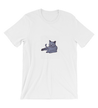 T-Shirt Fluffy gray cat