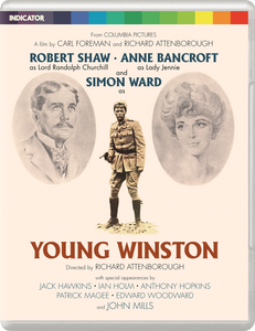 YOUNG WINSTON - LE