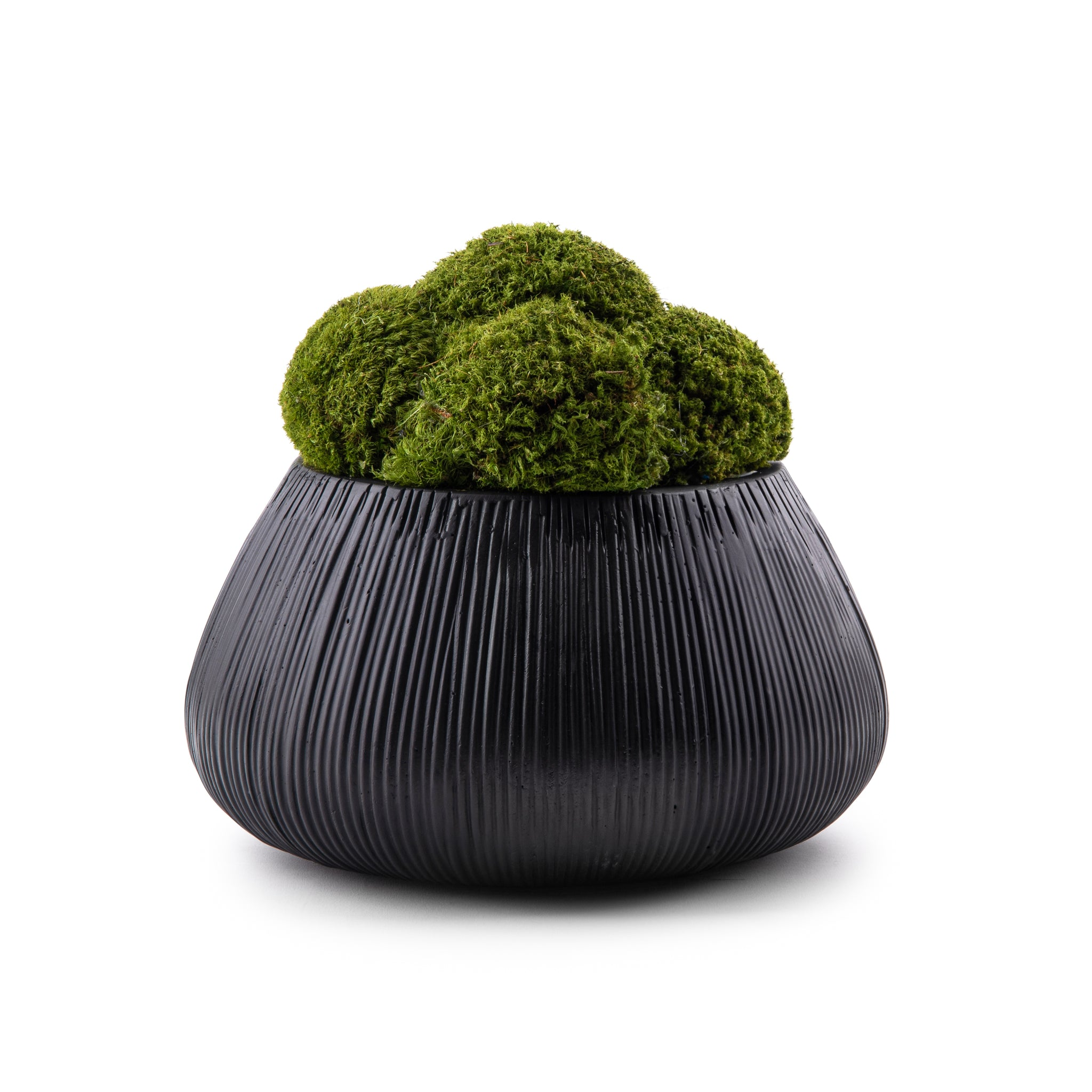 Black Ribbed Base Moss Planter