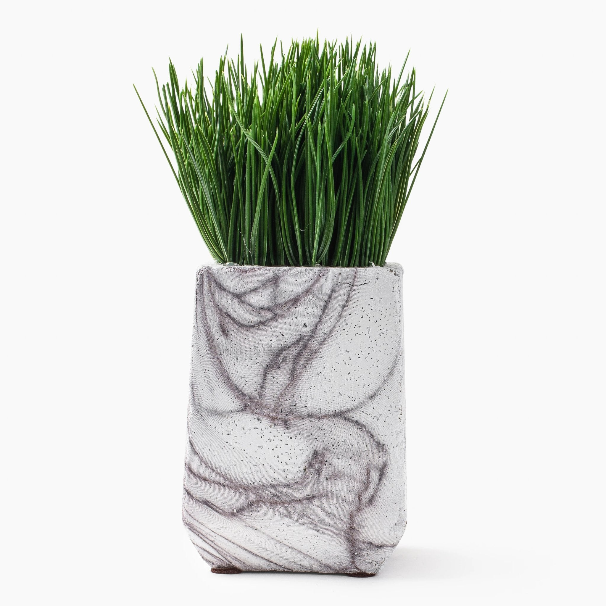Marble Base Grass Plant