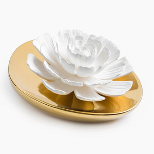 Dream Porcelain Flower Diffuser African Daisy