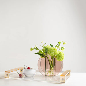Lucite Handle Tray
