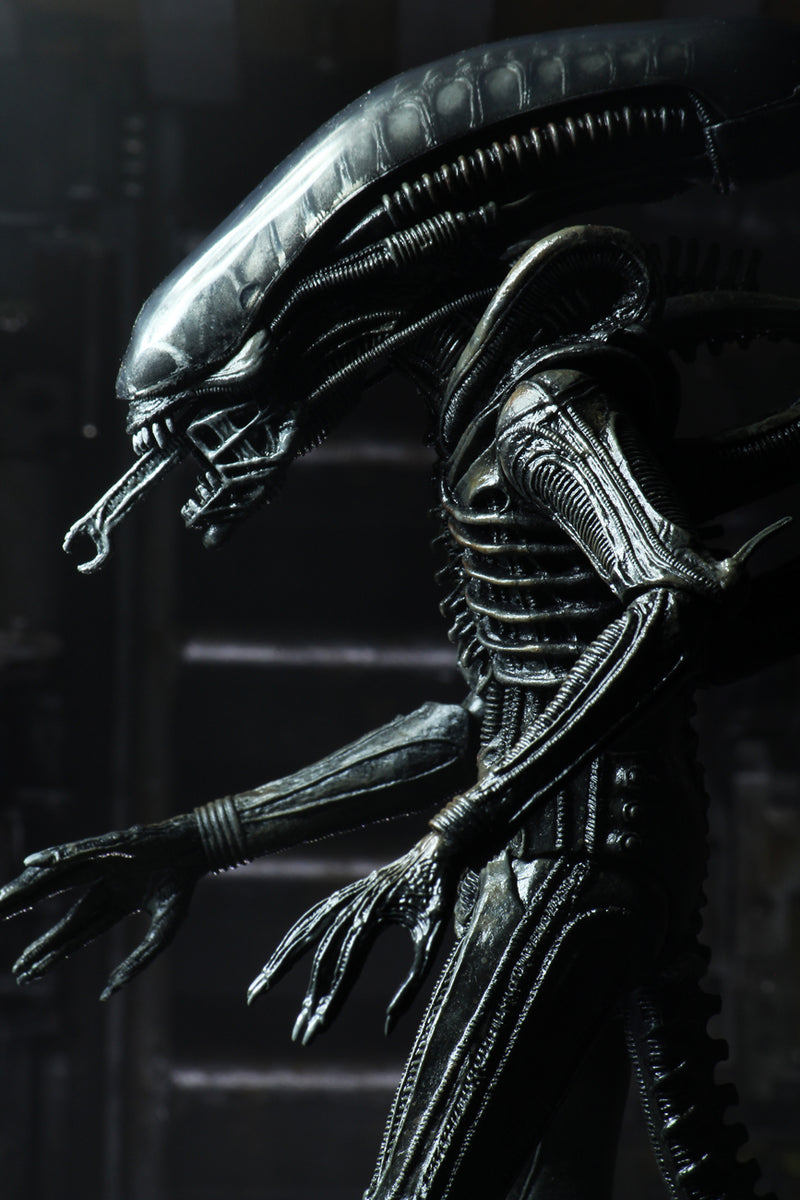 Alien Action Figure - Ultimate Big Chap Xenomorph 7 Inch Scale by NECA (40th Anniversary)