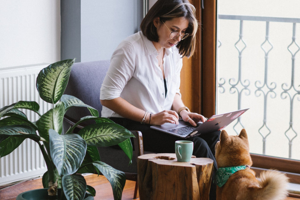 How to Make It Work as an Entrepreneur and a Dog Owner