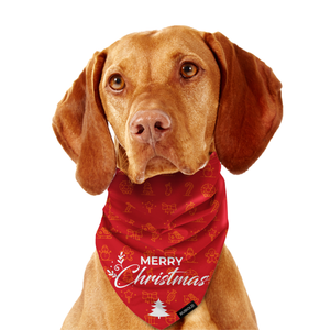 Trend Setter Christmas and New Year's Eve Bandana - dog grooming tools and dog care products