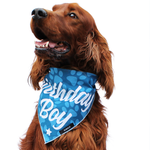 RUBOLD Trend Setter Birthday Boy Bandana - dog grooming tools and dog care products