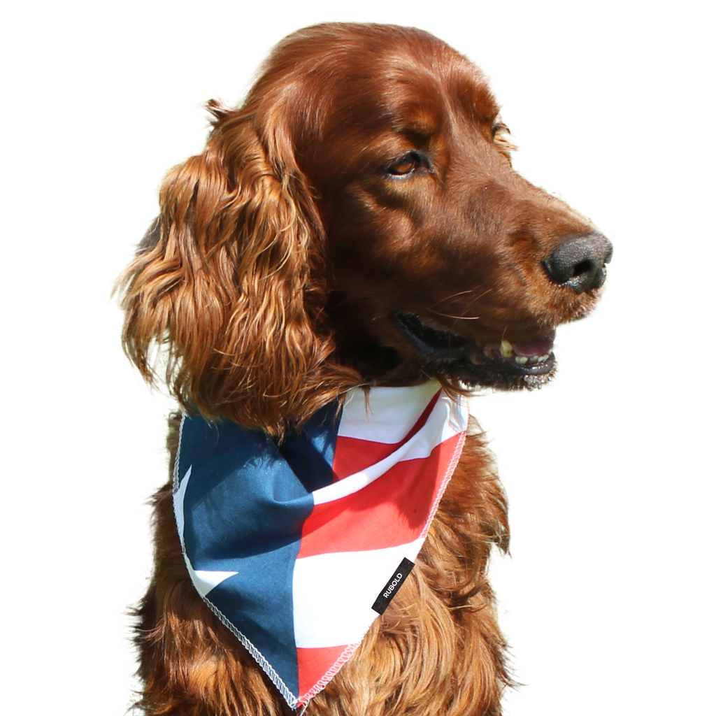 RUBOLD Trend Setter USA Flag Bandana - dog grooming tools and dog care products