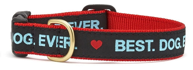 Best Dog Ever Collar