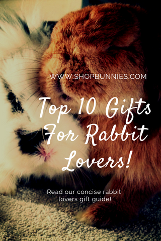 rabbit gift ideas