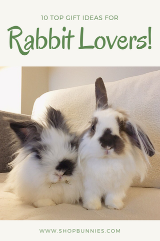 top gifts for rabbit lovers