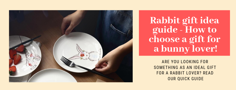 🐇The Rabbit gift idea guide - How to choose a gift for a bunny lover!