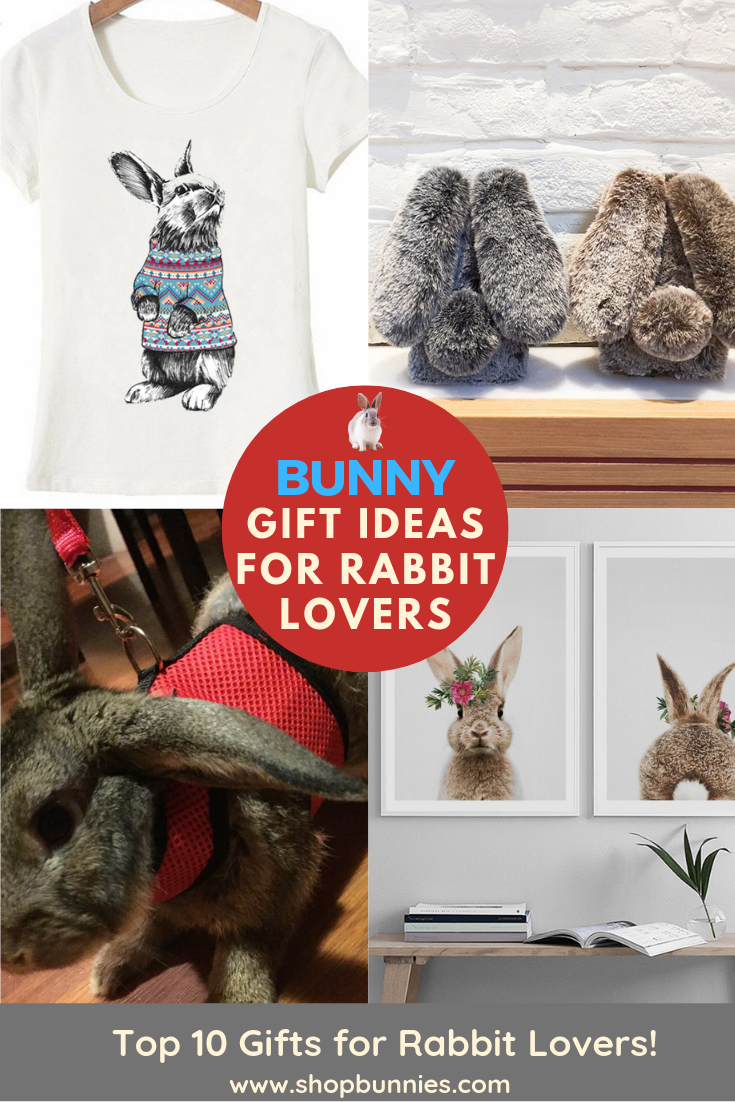 gifts for rabbit lovers guide to bunny art present t-shirt jewelry ideas