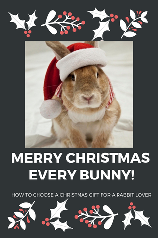 house rabbit gift ideas for rabbit lovers