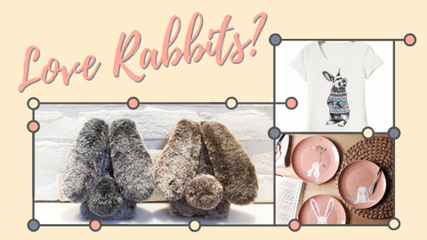 Love rabbits? Click here to read our blog.