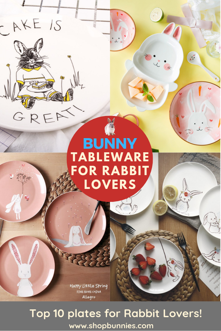 rabbit gift ideas for bunny lovers plates tableware kitchen