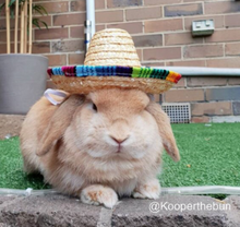 Load image into Gallery viewer, Straw Hat Sombrero For Rabbits