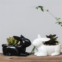 Rabbit Small Ceramic Flower Pot Planters