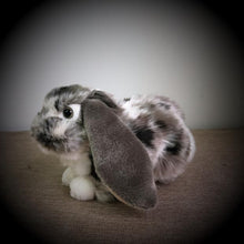 Load image into Gallery viewer, Holland Lop Soft Stuffed Plush Kids Toys