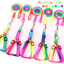 Load image into Gallery viewer, Rainbow Leash & Harness, Adjustable For Rabbits