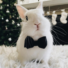 Load image into Gallery viewer, Adjustable Rabbit Bow Tie