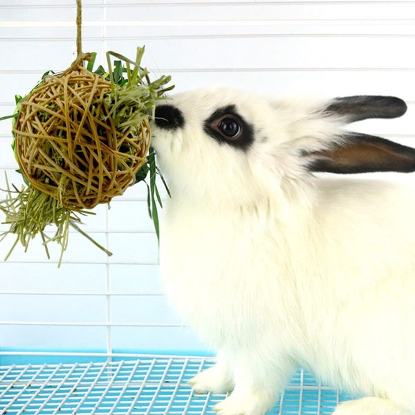 Rabbit Hanging Ball Feeder Natural Rattan