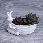 White China Ceramic Rabbit