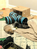 Rabbit Play Tunnel, Fold-able tube for training and exercise.