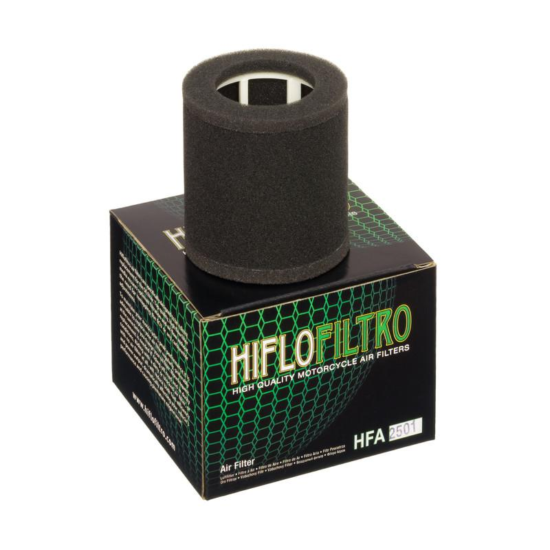 Hiflo Filtro HFA2501 OE Replacement Air Filter