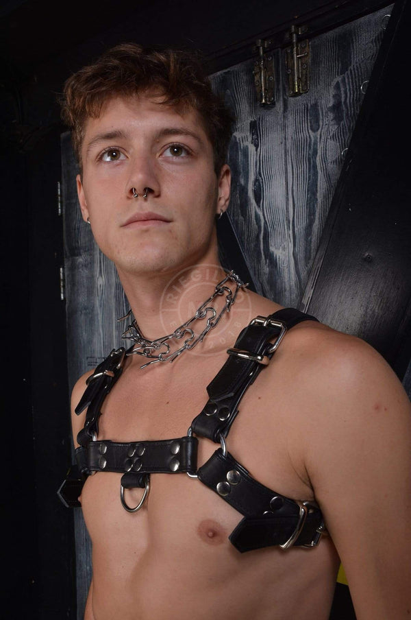 Leather Harness Harness Mr Riegillio