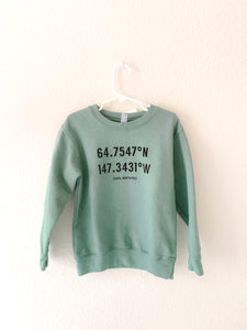 SANTA, NORTH POLE ( HAND DYED - green)  Toddler Sweatshirt