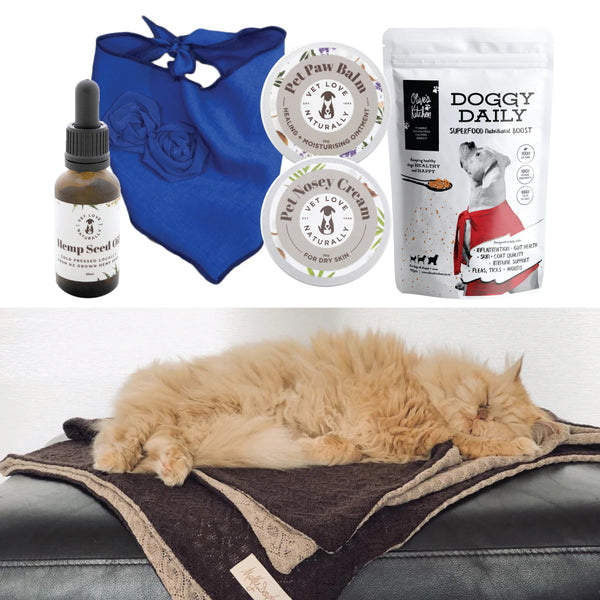 Doggy Daily Gift Pack