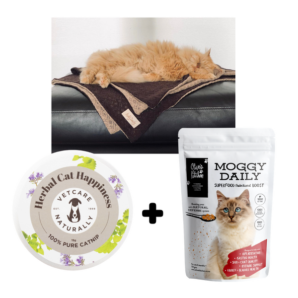 PET THROW + MOGGY DAILY + CATNIP