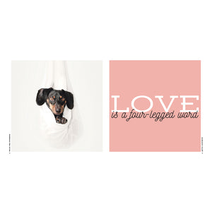 Love Is A Four-Legged Word - Quote Book
