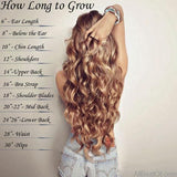 "AllBestOf.com HAIR 18-28"" Long Clip In Hair Extensions Synthetic 1 Piece Blond Black Brown 3/4 Full Head 9 colors"