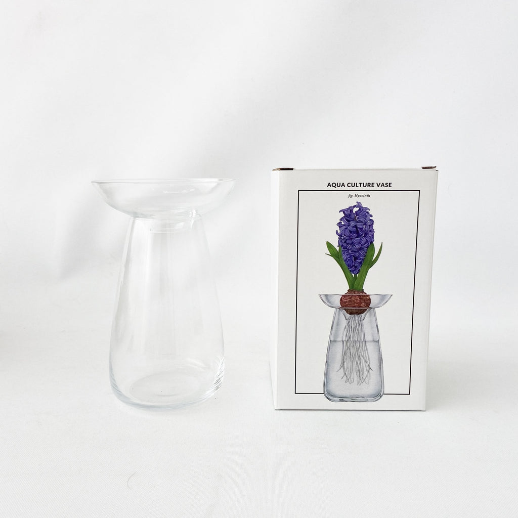 Aqua Culture Vase - Clear Large - tortoise general store
