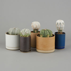 "HPM045 - Planter Gloss Gray ø 5.5/8"" - tortoise general store"