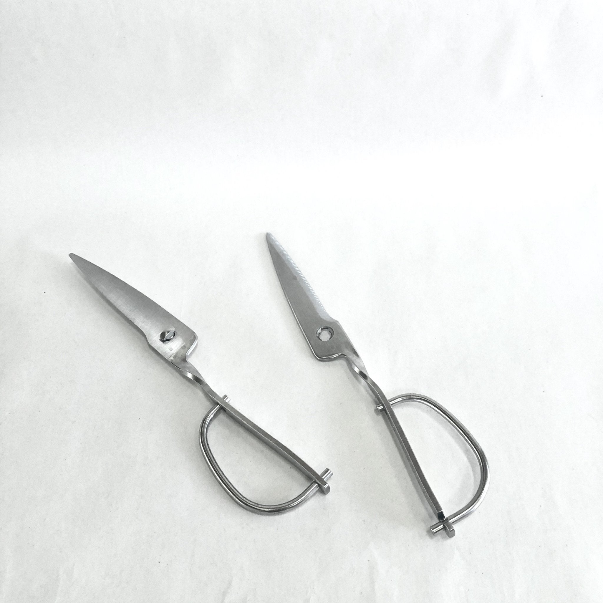 Kitchen Scissors Toribe (TS750) - tortoise general store