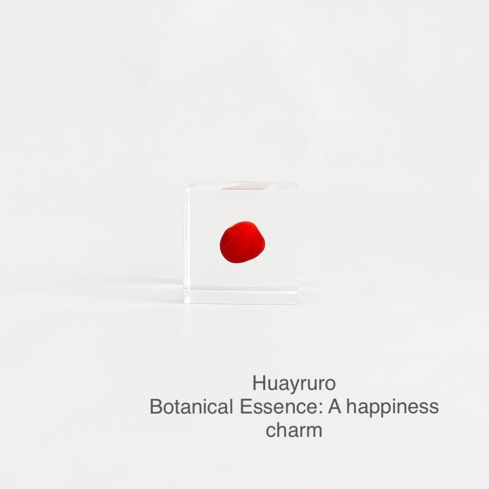 Huayruro with Botanical Essence: A Happiness Charm