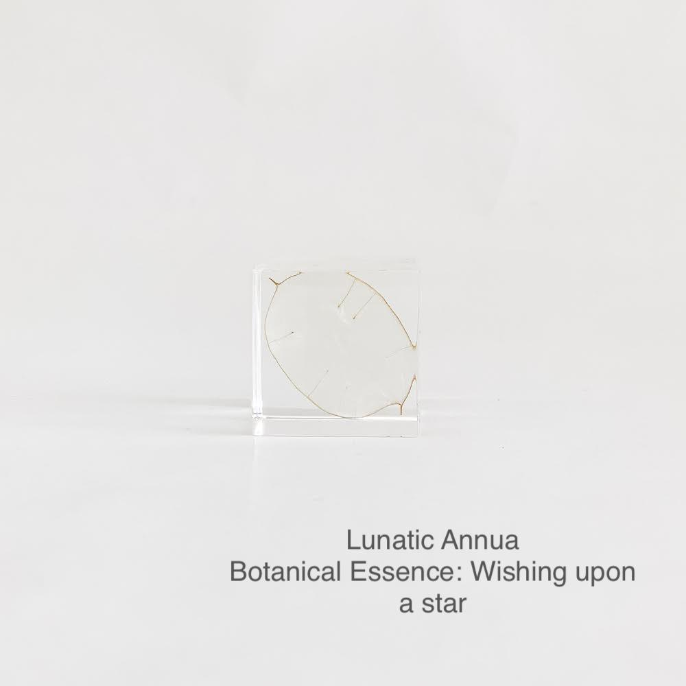 Lunatic Annua with Botanical Essence: Wishing Upon a Star
