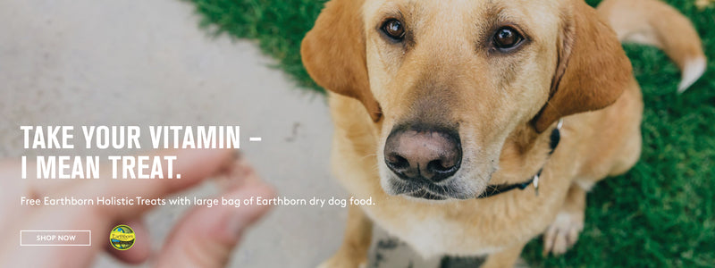 free earthborn holistic treats with large bag of dry food