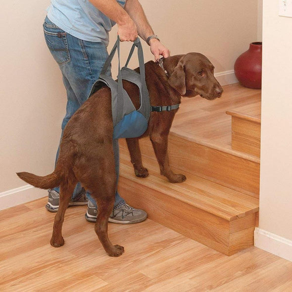 Kurgo Up & About Dog Lifter Support Harness