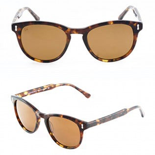 The Providence (Turtle Shell)-Sunglasses-Velo Optics