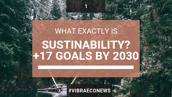 What is Sustainability? + 17 Sustainable Development Goals 2030